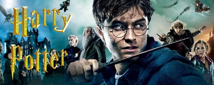 Negozio Harry Potter a Grazzano Visconti - Piacenza